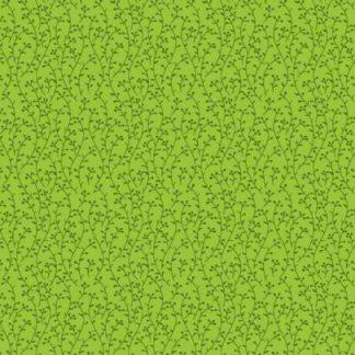 12209 kiwi