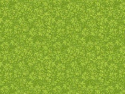 12210 kiwi