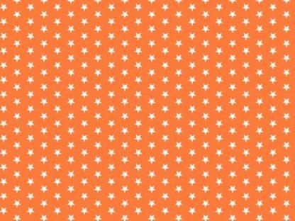 12541 orange