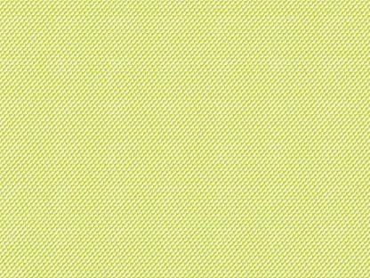 12870-A kiwi