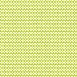 12870 kiwi