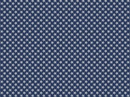13653 blue-white