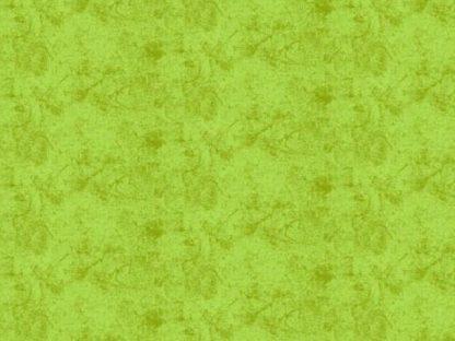 8918 kiwi